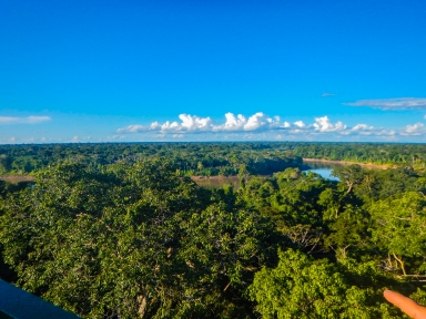 Birdseye view of the Peruvian Amazon