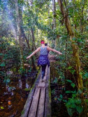Rainforest walks in the Peruvian Amazon